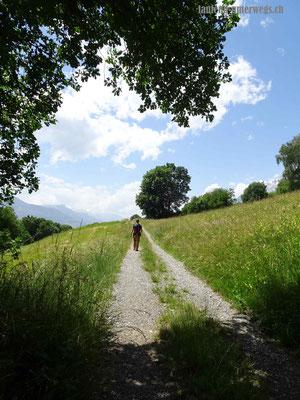 Wanderweg über Felder