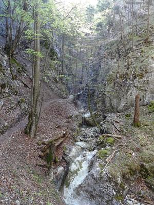 Schofgraben