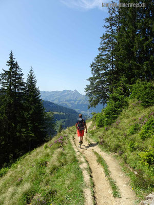 Wanderweg von Brunnihütte Richtung Greberegg