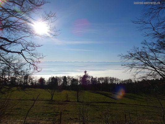 Sicht auf Nebelmeer