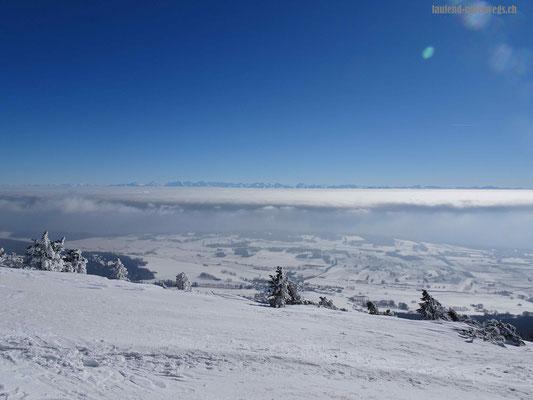 Blick vom Chasseral auf das Nebelmeer und in die Alpen
