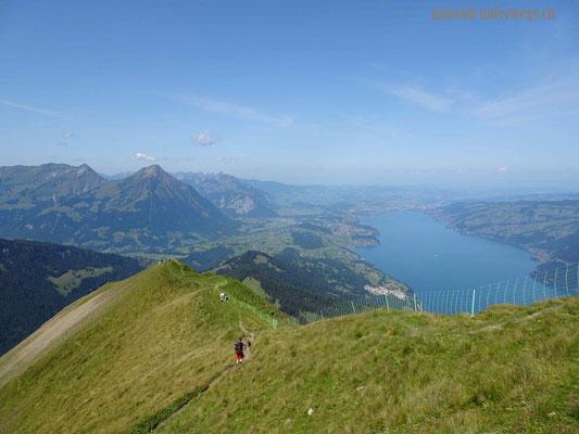 Steiler Abstieg vom Morgenberghorn in Richtung Brunnihütte - zuerst über Grasnarbe