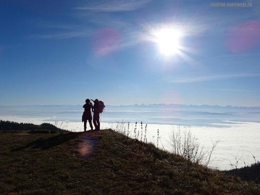 Blick ins Mittellanf und in die Alpen