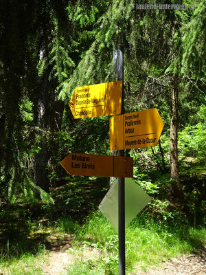 Wanderweg entlang Bisse du Torrent Neuf