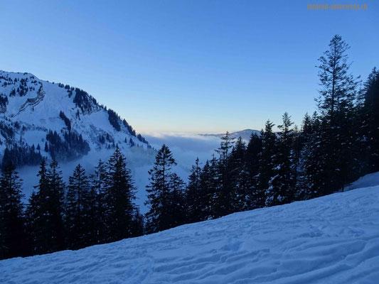 Nebelmeer im Flachland