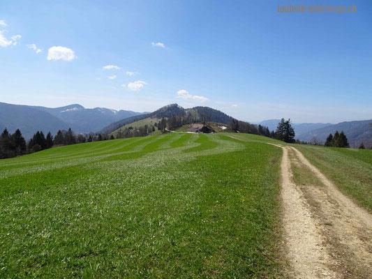 Blick zum Hof Harzer