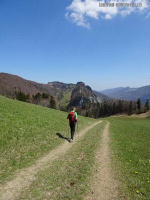 Blick in den Harzergraben und auf Felsmassiv