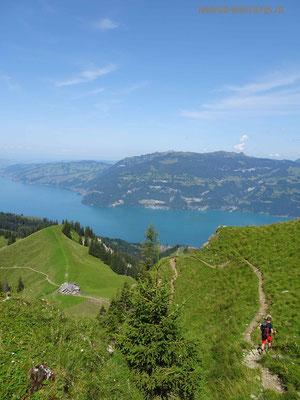 Steiler Abstieg vom Morgenberghorn in Richtung Brunnihütte