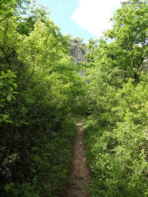 Weg zur Felswand