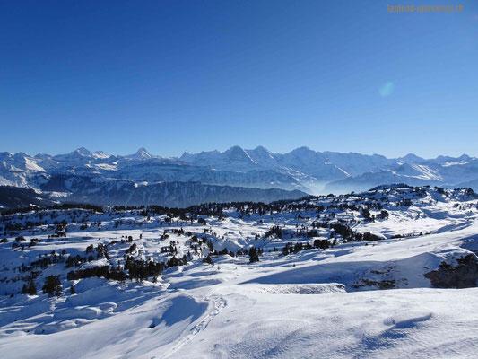 Bergpanormana mit Wetterhorn, Schreckhorn, Eiger, Mönch und Jungfrau