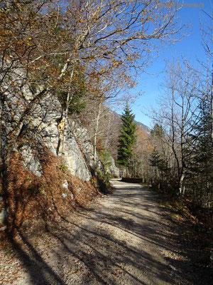 Waldweg in Richtung Lommiswil
