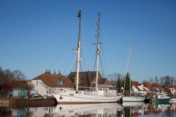 Segelschulschiff Greif im Hafen Wieck (Greifswald)