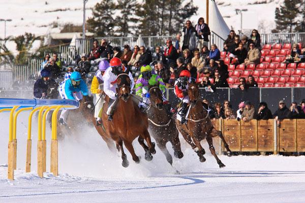 White Turf - Pferderennen auf dem zugefrorenen See