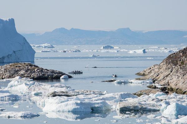 Auch noch an Land deutlich zu hören: der Blas von zwei Buckelwalen