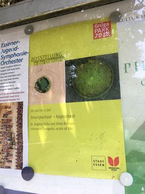 """""""Unser"""" Plakat zur Ausstellung"""