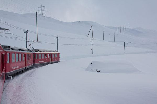 Unterwegs mit dem Bernina-Express