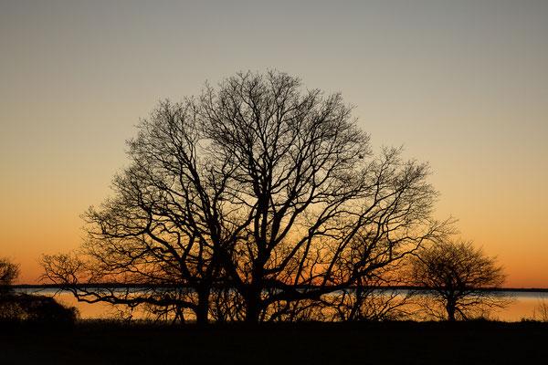 Sonnenuntergang in Stagnietz
