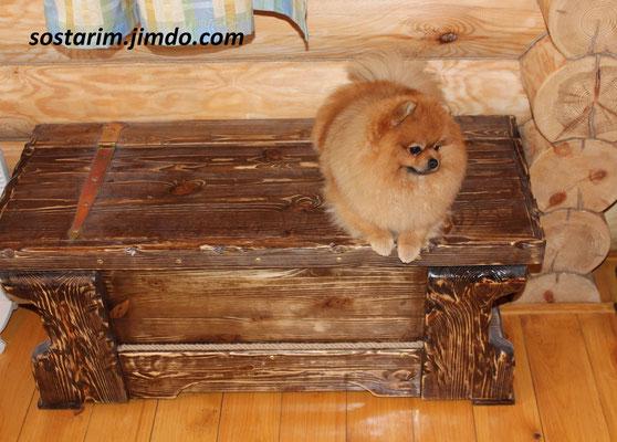 Сундук(собака отдельно)