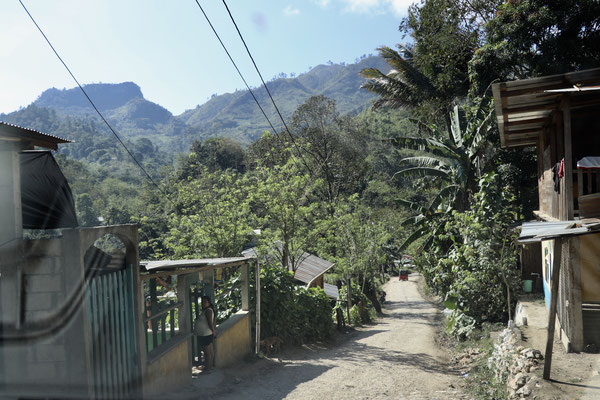 ...leaving Lanquin the road gets more and more narrower which makes it a challenge passing head on vehicles..