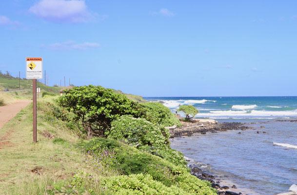 Shoreline just north of Kapa'a Beach