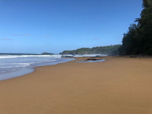 ..a beautiful big sandy beach...