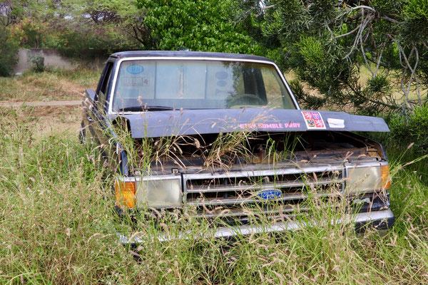 You find scrap cars all over Big Island