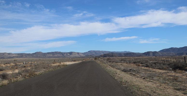 Dry roadside landscape in Baja...