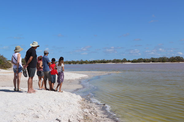 The next day we went for a tour into the pink lagoons of Celestun..