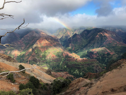 As we drove down and out of the Waimea Canyon..