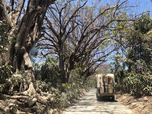 The next day we drove into Montezuma