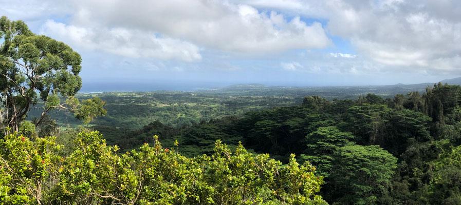 View off Okolehao Trail down to Kilauea Lighthouse
