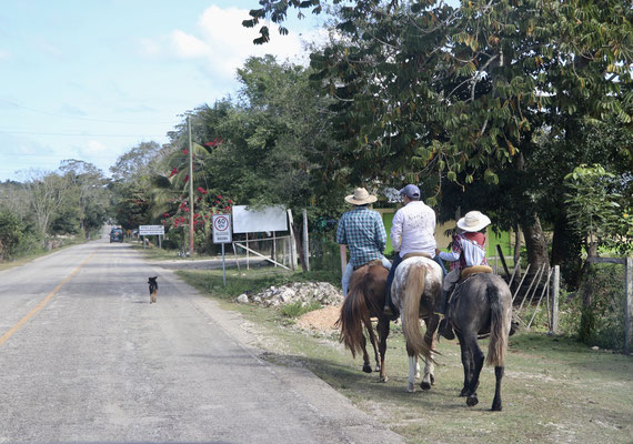 There are not many vehicles on the road in Guatemala instead you see a lot of people either riding horses or walking