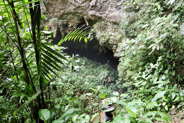 The entry to the cave