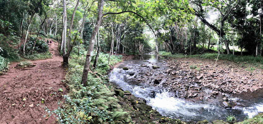 We went for a hike down to Ho'opi'i River...