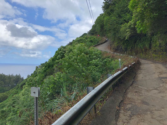 There is only one steep road going into Waipi'o Valley