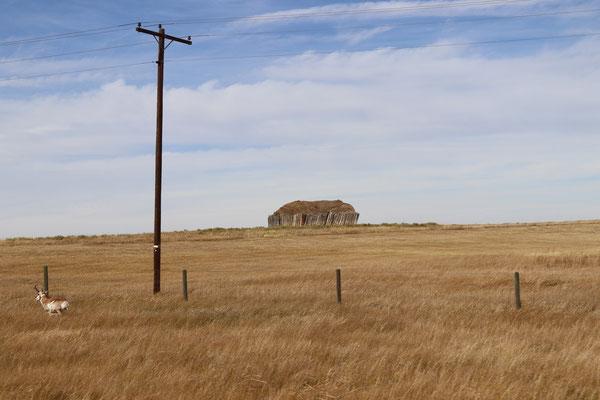 Landscape Wyoming