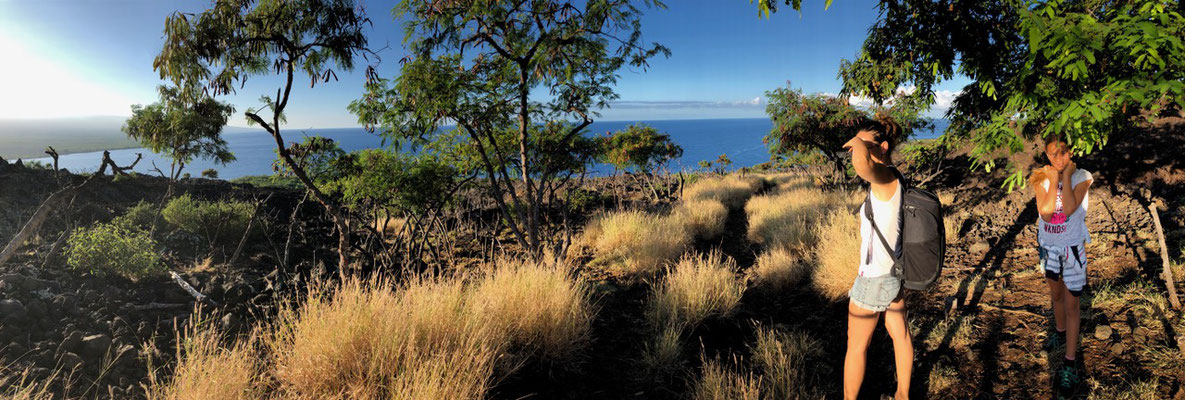 Captain Cook Trail is worth while especially for snorkelling