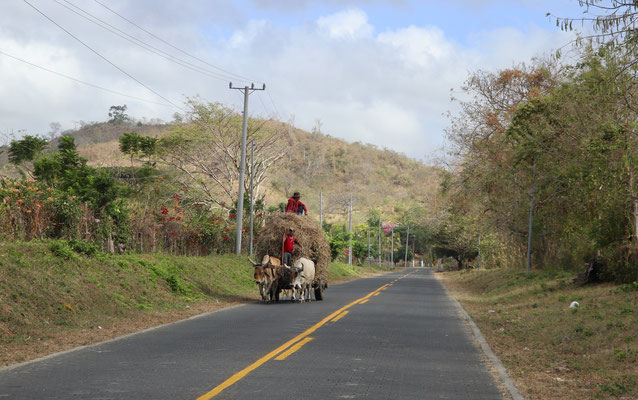 On the 5th March we left Popoyo and head inland - here a typical sight on the roads in Nicaragua