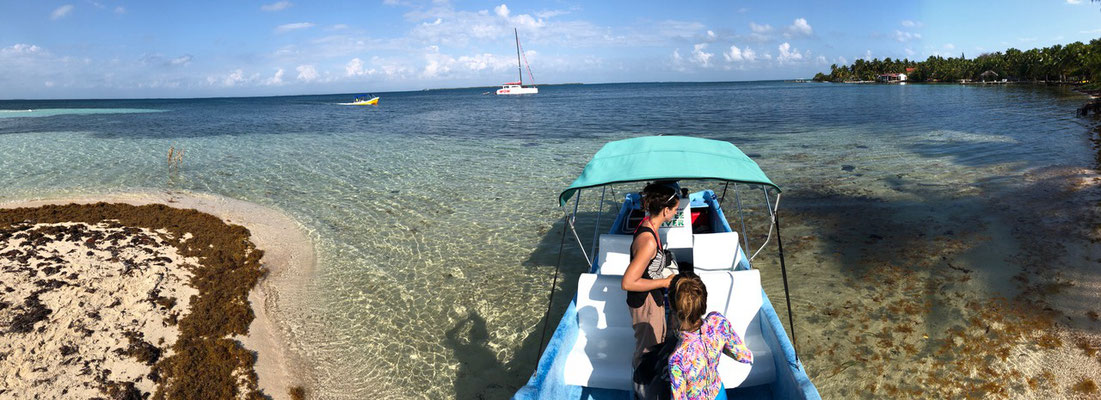 The next day we booked a trip out to the coral reef of Belize