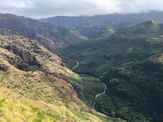 We drove up along side the western slope of the Waimea Canyon...