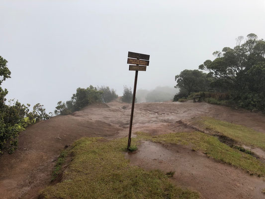 ...at the top of the road at 5200ft (1560m) you get to a lookout where you should see the north coast below you, but as it happens to be one of the wettest places on earth you really have to be lucky to see anything from their