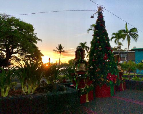 Christmas Tree in Kona Town