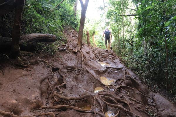 ...the path down to Queens Bath..