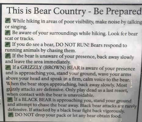 Bear Instructions
