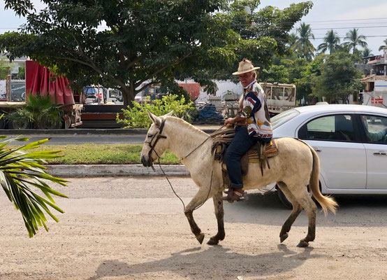 ..a sight you see all over Mexico the old man on his mule