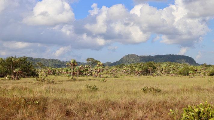 Our next destination is Hopkins on the caribbean coast
