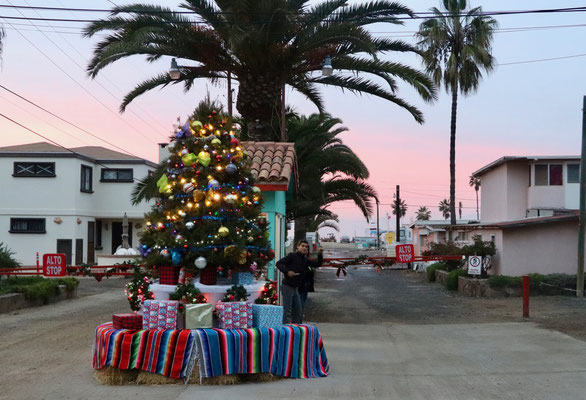 One of our first encounters with Xmas decoration in Ensenada, Baja California