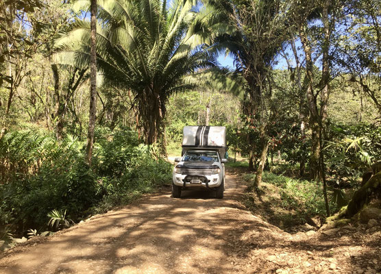 ..half way through we are now down in the jungle and I'm so glad the road is dry as I've read of other Overlanders slipping and sliding in the mud