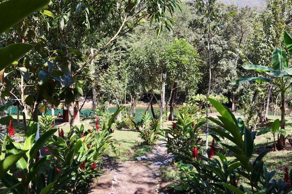 ..a beautiful garden.