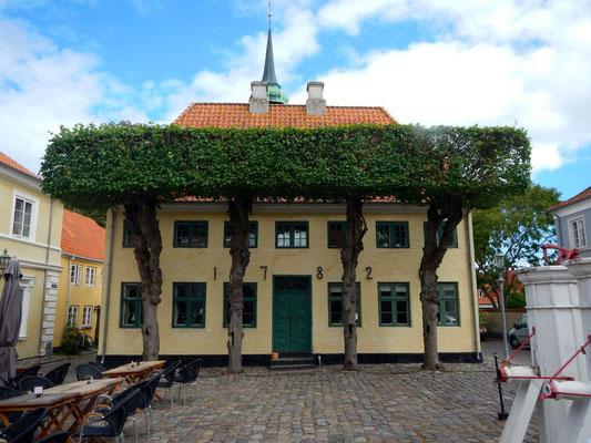 Ærøskøbing- gelbes Haus am Marktplatz - Torvet - mit rechteckig geschnittenen Bäumen - Linden?